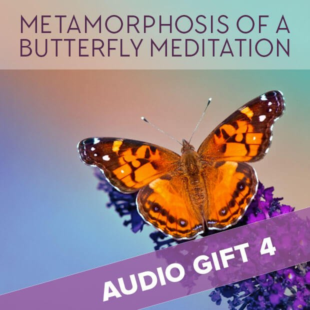 Metamorphosis of a Butterfly Meditation